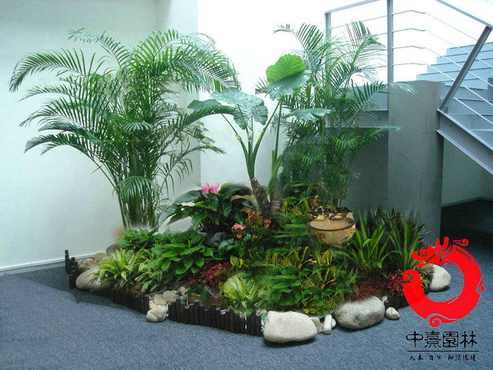 名称:植物造景48