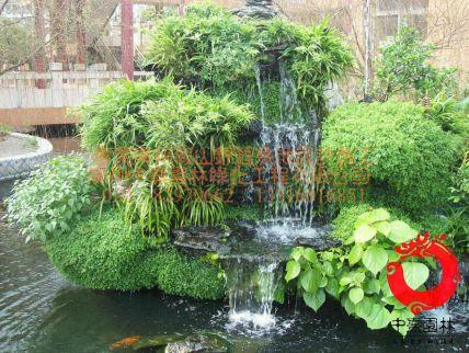 名称:英石假山鱼池施工设计